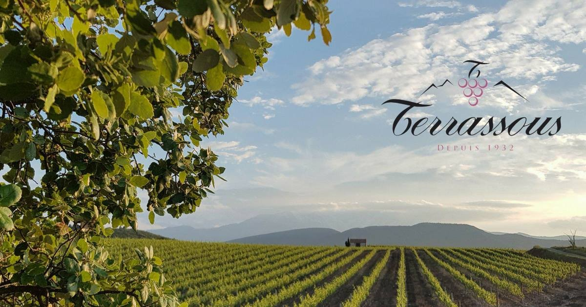 vignobles-terrassous-a-thuir